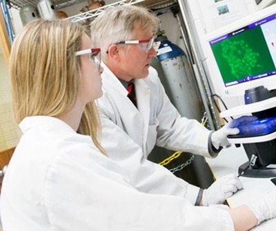 NIU student Natalie Lubbers and Professor Barrie Bode examine an image of cancer cells expressing a fluorescent protein.