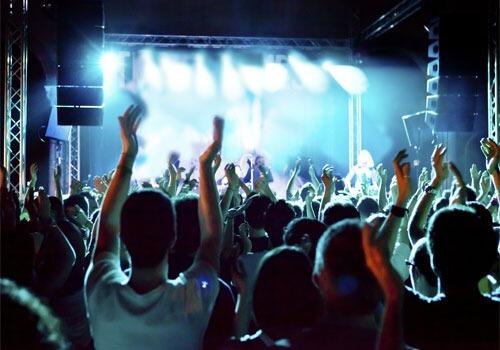 Fans at a rock concert